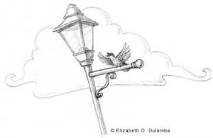 illo-birdsketch